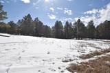 Elk Trail - Photo 16