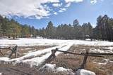 Elk Trail - Photo 17