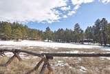 Elk Trail - Photo 18