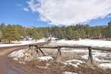 Elk Trail - Photo 19
