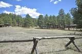 Elk Trail - Photo 2