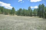Elk Trail - Photo 3