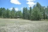 Elk Trail - Photo 4