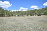 Elk Trail - Photo 6