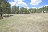 Elk Trail - Photo 7