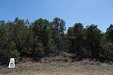 50 Los Pecos Loop - Photo 3