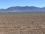 Separ Hay & Cattle Farm - Photo 1