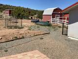 41 Apple Mountain Road - Photo 40