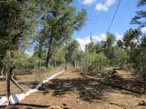 104 Pinetree Road - Photo 52
