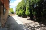 8325 La Camila Road - Photo 11
