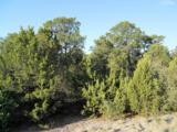 11 Rancho Verde Road - Photo 12