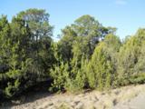 11 Rancho Verde Road - Photo 13