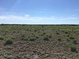 40 Acres - Photo 1