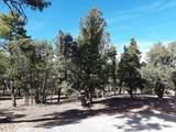 14 Lucero Lane - Photo 12