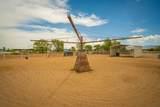 7 Don Quixote - Photo 51