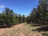 165 Homestead Trail - Photo 1
