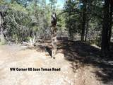 60 Juan Tomas Road - Photo 5