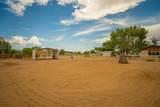 7 Don Quixote - Photo 49