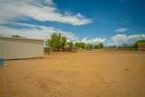 7 Don Quixote - Photo 56