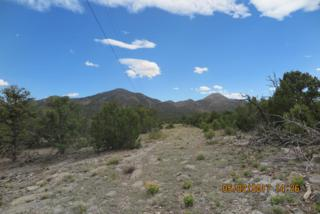 59 Ranchitos Road, Sandia Park, NM 87047 (MLS #891564) :: Campbell & Campbell Real Estate Services