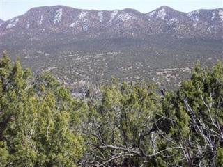 31 La Cantera, Sandia Park, NM 87047 (MLS #891793) :: Campbell & Campbell Real Estate Services