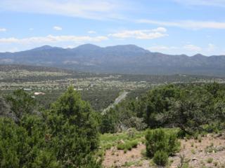 31 Prado Vista, Sandia Park, NM 87047 (MLS #891850) :: Campbell & Campbell Real Estate Services