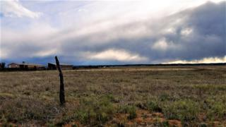 0 Green Road, Moriarty, NM 87035 (MLS #891947) :: Campbell & Campbell Real Estate Services