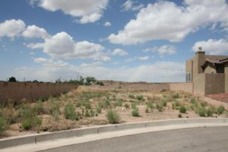 922 Nicholas Court, Bernalillo, NM 87004 (MLS #892035) :: Campbell & Campbell Real Estate Services