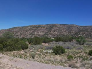 788 Highway 165, Placitas, NM 87043 (MLS #892157) :: Campbell & Campbell Real Estate Services