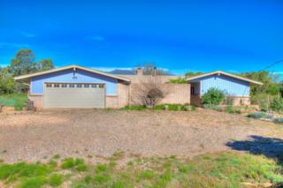 77 Stagecoach Junction Road, Sandia Park, NM 87047 (MLS #892176) :: Campbell & Campbell Real Estate Services