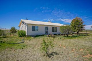 702 Dinkle Road, Edgewood, NM 87015 (MLS #892203) :: Campbell & Campbell Real Estate Services