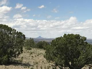 84 Camino Redondo, Placitas, NM 87043 (MLS #892291) :: Campbell & Campbell Real Estate Services