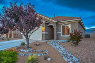 1112 Desert Willow Court, Bernalillo, NM 87004 (MLS #892371) :: Campbell & Campbell Real Estate Services