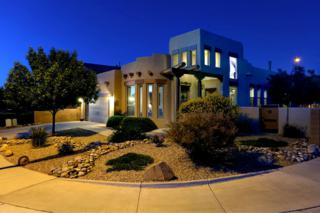 916 Cristanos Drive, Bernalillo, NM 87004 (MLS #892439) :: Campbell & Campbell Real Estate Services