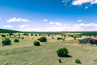 47 Casper Court, Moriarty, NM 87035 (MLS #892449) :: Campbell & Campbell Real Estate Services