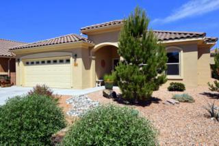 965 Salt Cedar Court, Bernalillo, NM 87004 (MLS #892459) :: Campbell & Campbell Real Estate Services