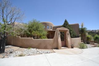 10 Cinco Circle, Placitas, NM 87043 (MLS #892546) :: Campbell & Campbell Real Estate Services
