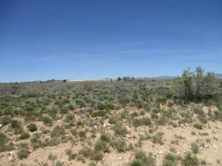 Belgian, Moriarty, NM 87035 (MLS #892608) :: Campbell & Campbell Real Estate Services