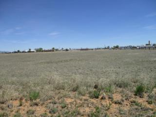 Belgian Road, Moriarty, NM 87035 (MLS #892612) :: Campbell & Campbell Real Estate Services