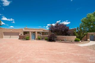 306 Paseo De Corrales, Corrales, NM 87048 (MLS #892672) :: Campbell & Campbell Real Estate Services
