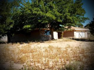 355 El Rey Drive, Corrales, NM 87048 (MLS #892675) :: Campbell & Campbell Real Estate Services
