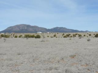 67 B W Hill Ranch Road, Edgewood, NM 87015 (MLS #892688) :: Campbell & Campbell Real Estate Services