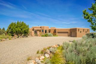 1 Anatoly Court, Placitas, NM 87043 (MLS #892810) :: Campbell & Campbell Real Estate Services