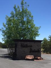 Nature Pointe Drive, Tijeras, NM 87059 (MLS #892854) :: Campbell & Campbell Real Estate Services