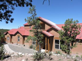24 Tablazon Valley Drive, Tijeras, NM 87059 (MLS #892887) :: Campbell & Campbell Real Estate Services