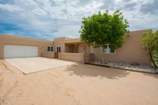1234 Alamos Road, Corrales, NM 87048 (MLS #892892) :: Campbell & Campbell Real Estate Services