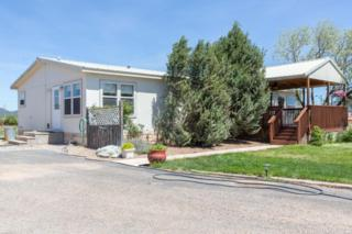 27 Ventura Lane, Edgewood, NM 87015 (MLS #892922) :: Campbell & Campbell Real Estate Services