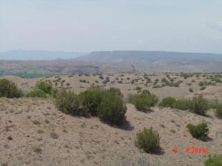 Basketweaver Court, Lot 39, Placitas, NM 87043 (MLS #892925) :: Campbell & Campbell Real Estate Services
