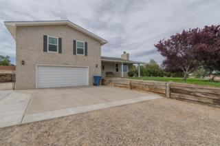 735 Canal Boulevard SW, Los Lunas, NM 87031 (MLS #892955) :: Campbell & Campbell Real Estate Services