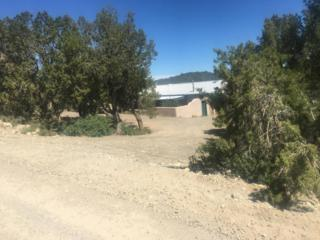 3653 W.  Martinez Road, Edgewood, NM 87015 (MLS #893001) :: Campbell & Campbell Real Estate Services